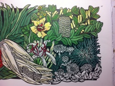 24 Seaside Wildflowers - HANDCOLOURING 4
