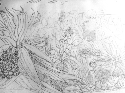 Seaside Wildflowers Drawing 3