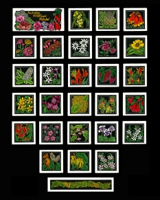 Australian Wildflower Alphabet - http://lynetteweir.com/linocut-australian-linocut-artist/australian-wildflower-alphabet-limited-edition-linocut-series/