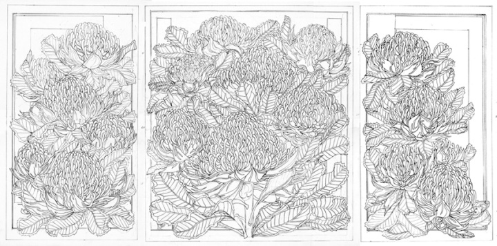 DRAWINGS - Waratah Trytich WEB