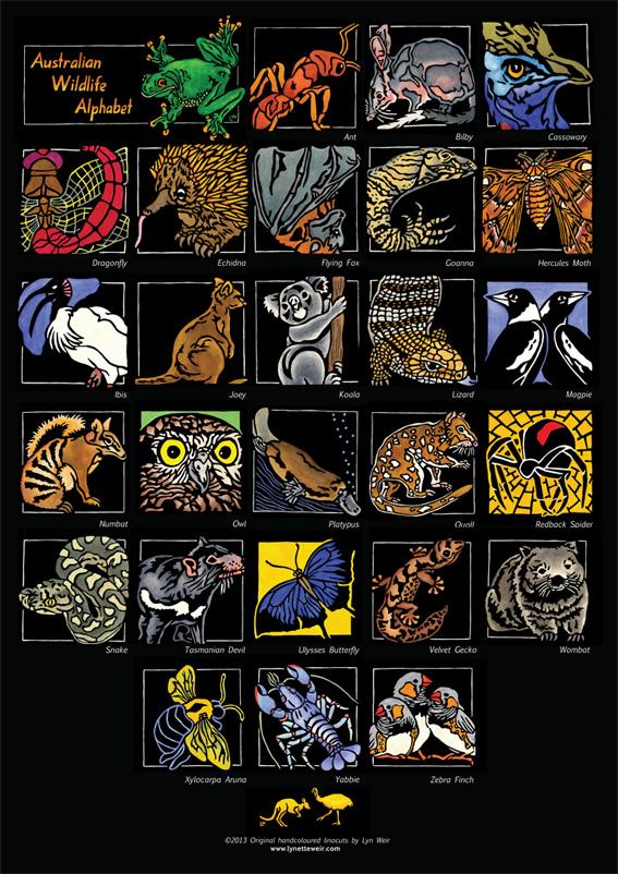 SOULSONG - Lynette Weir - Australian Wildlife Alphabet WEB